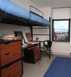 SVA dorm room