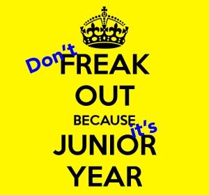 Junior year freak out